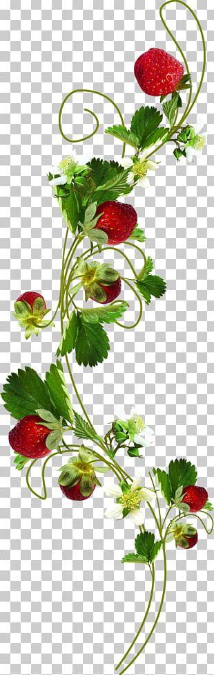 Leaf Flower Plant Strawberry PNG
