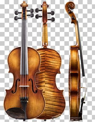 Violin Musical Instruments Double Bass Viola Cello PNG