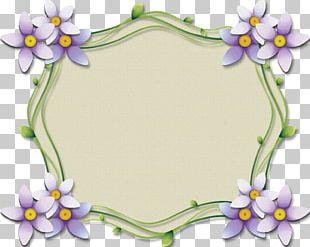 Pelmeni Floral Design Photography PNG