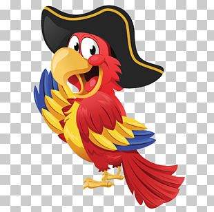 Pirate Parrot Piracy PNG
