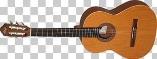 Taylor Guitars Classical Guitar Acoustic Guitar String Instruments PNG