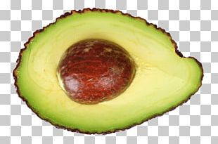 Stock.xchng Portable Network Graphics Hass Avocado Food PNG