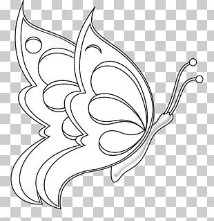 Butterfly Line Art Drawing Black And White PNG