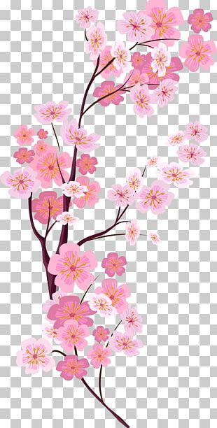 Cherry Blossom Euclidean PNG
