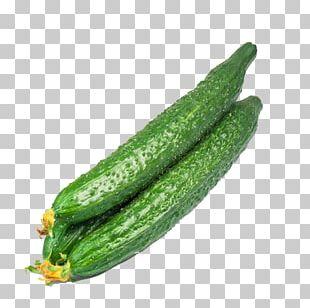Cucumber Organic Food Vegetable Seed Crisp PNG