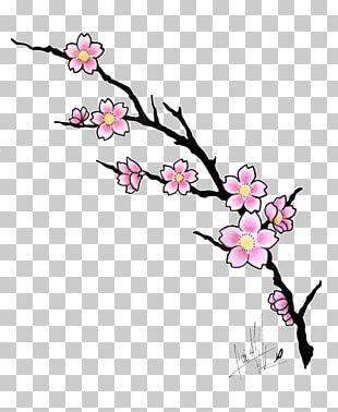 Cherry Blossom Drawing Tattoo Cartoon PNG