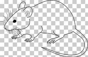 Laboratory Mouse Laboratory Rat Drawing PNG