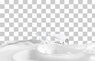 Monochrome Black And White Liquid PNG
