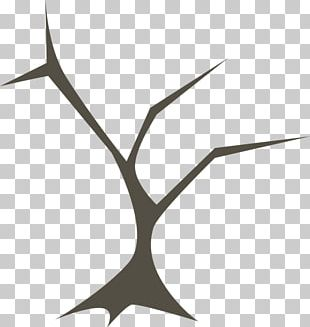 Branching Tree Forest Release Management PNG