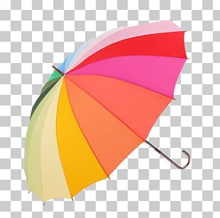 Umbrella Raincoat PNG