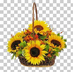 Common Sunflower Floral Design Floristry Basket PNG