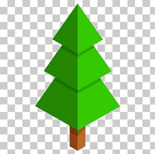 Triangle Plant Tree Geometry PNG