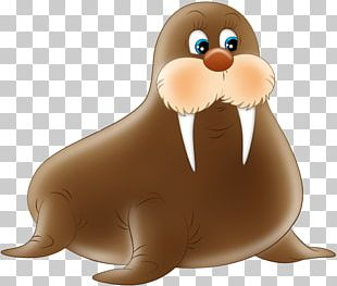 Walrus Sea Lion Earless Seal Child Polar Bear PNG