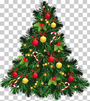 Christmas Tree Christmas Decoration PNG