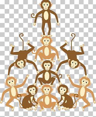 Homo Sapiens Human Behavior PNG
