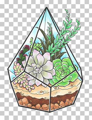 Succulents And Cactus Cactaceae Succulent Plant Header PNG