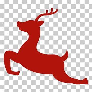 Christmas Santa Claus Gift PNG