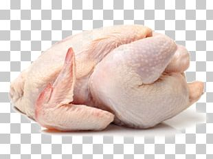 Broiler Cornish Chicken Chicken As Food Meat Poultry PNG