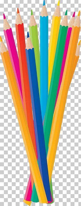 Colored Pencil Pen & Pencil Cases PNG