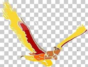 Garuda Png Images Garuda Clipart Free Download