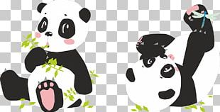 Giant Panda Portable Network Graphics Bear PNG