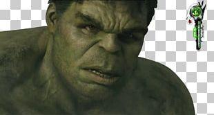 Mark Ruffalo Hulk Iron Man Black Widow Thor PNG