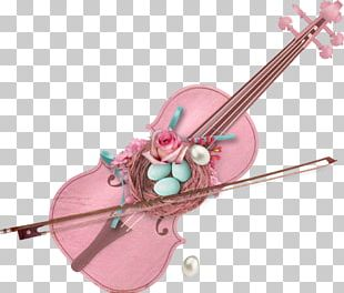 Violin Family Musical Instruments Cello PNG