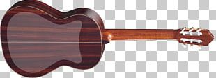 Acoustic-electric Guitar Musical Instruments Plucked String Instrument String Instruments PNG