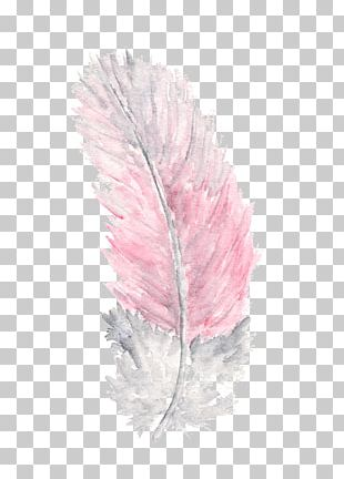 Feather Watercolor Painting Watercolour Flowers PNG