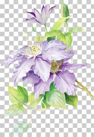 Flower Bouquet Floral Design Watercolor Painting Drawing PNG