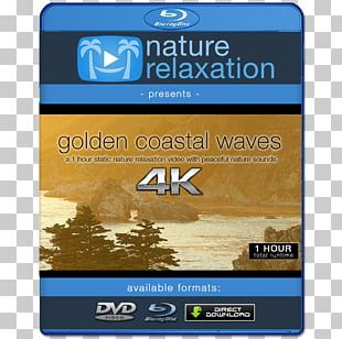 Blu-ray Disc Ultra HD Blu-ray 4K Resolution Ultra-high-definition Television 1080p PNG