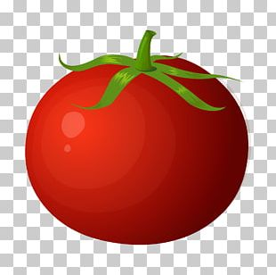 Tomato Juice Cherry Tomato Vegetable Fruit Food PNG