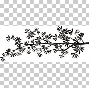 Twig Leaf White Flowering Plant Line PNG