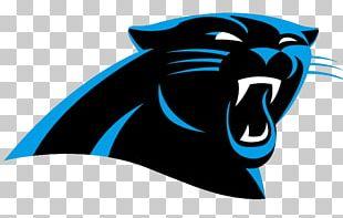 Carolina Panthers Super Bowl 50 NFL AFCu2013NFC Pro Bowl Panthersu2013Seahawks Rivalry PNG