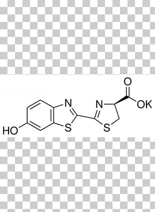 Firefly Luciferin Firefly Luciferase PNG