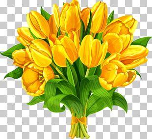 Indira Gandhi Memorial Tulip Garden Flower Bouquet PNG