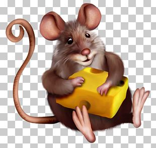 Mouse Macaroni And Cheese PNG