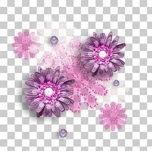 Chrysanthemum Transvaal Daisy Pink M Petal PNG