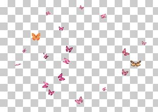 Butterfly Flight PNG