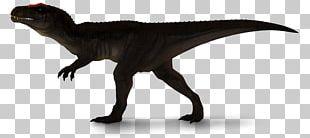 Velociraptor Carcharodontosaurus Jurassic Park: Operation Genesis Tyrannosaurus Dinosaur PNG