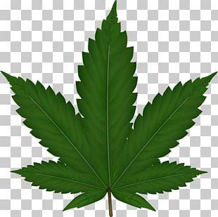 Medical Cannabis Hemp Plant PNG
