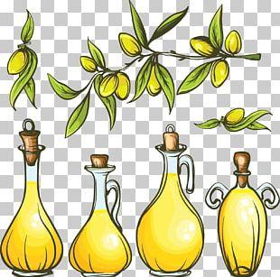 Olive Oil Food PNG