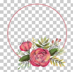 Hand Painted Rose Flower Decorative Frame PNG