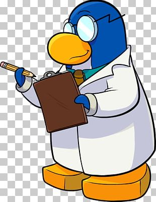 Club Penguin Island Flightless Bird The Walt Disney Company PNG