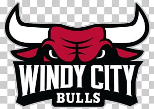 Sears Centre Arena Windy City Bulls NBA Development League Chicago Bulls Canton Charge PNG