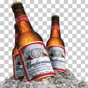 Budweiser Budvar Brewery Beer Anheuser-Busch InBev PNG