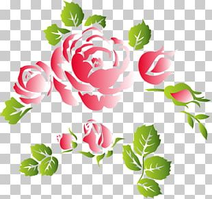 Flower Floral Ornament PNG