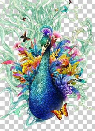Bird Peafowl Painting Drawing Feather PNG