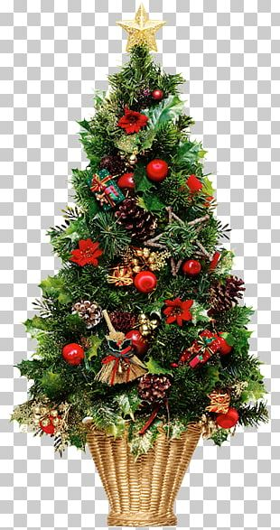 Christmas Tree Christmas Day Christmas Lights PNG