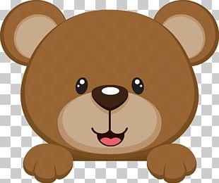 Brown Bear Baby Bear PNG